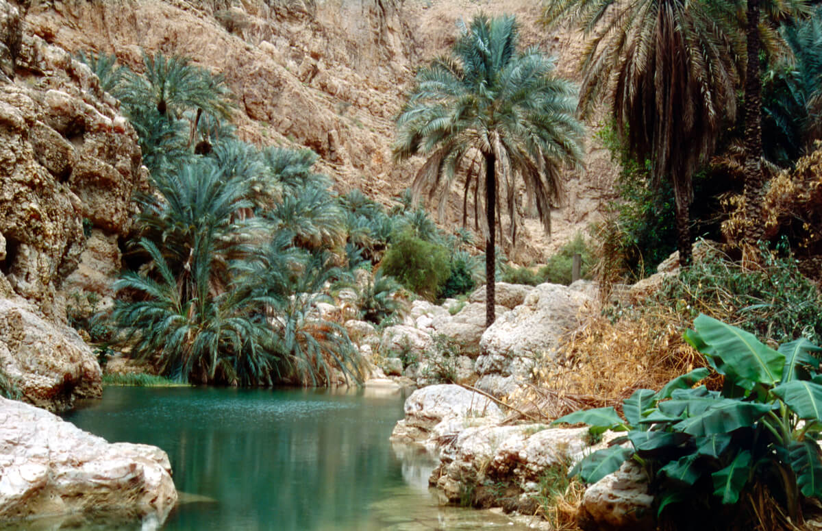 Wadi Shab oasis - one of the most visited attractions in Oman