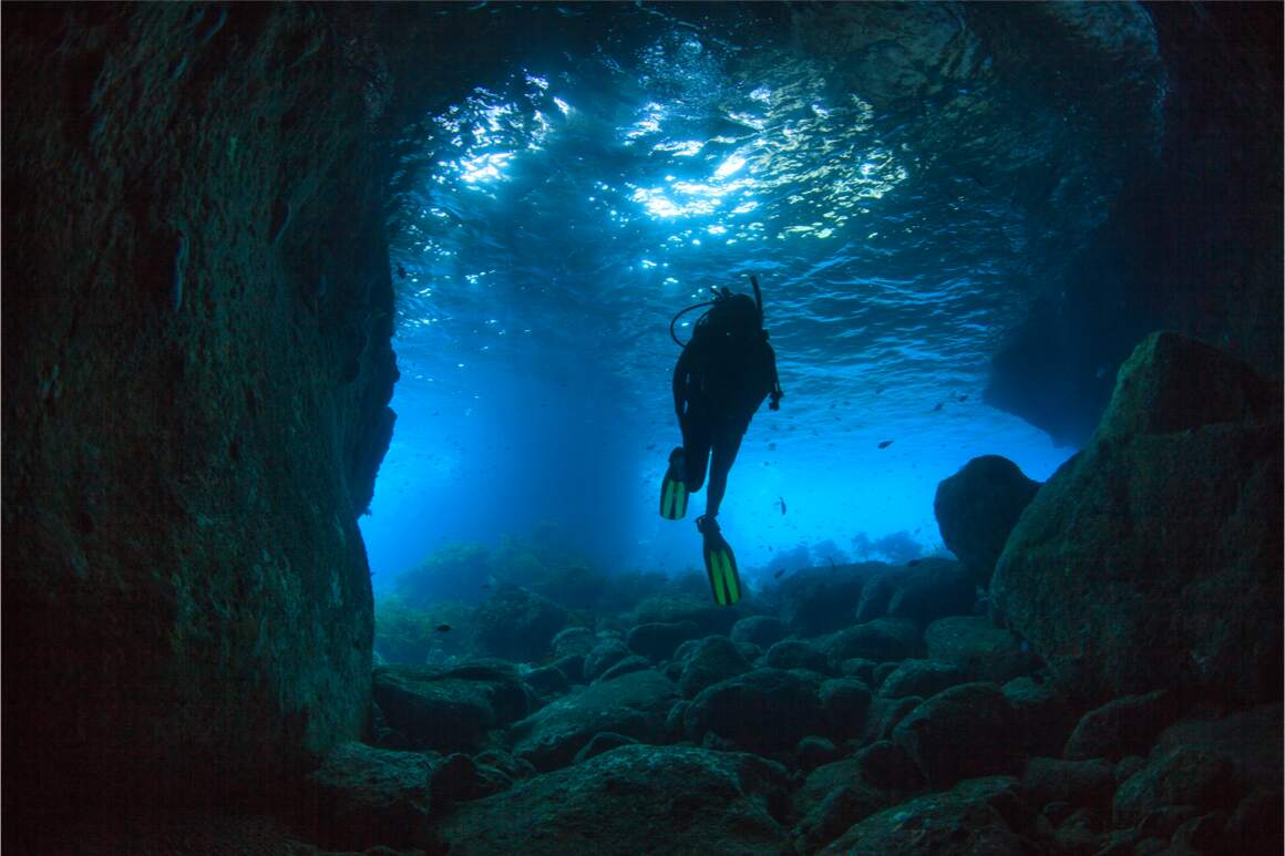 A diver swims through a cave close to the Poor Knights dive site in New Zealand.