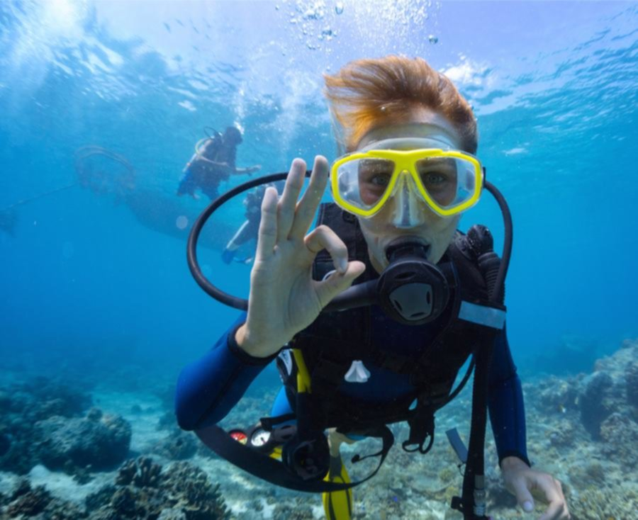 Female diver gives the OK hand signal while underwater diving in New Zealand.