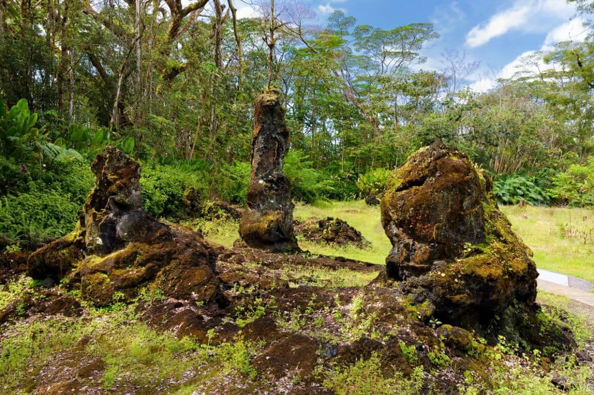 Lava Tree State Monument The Big Island Hawaii