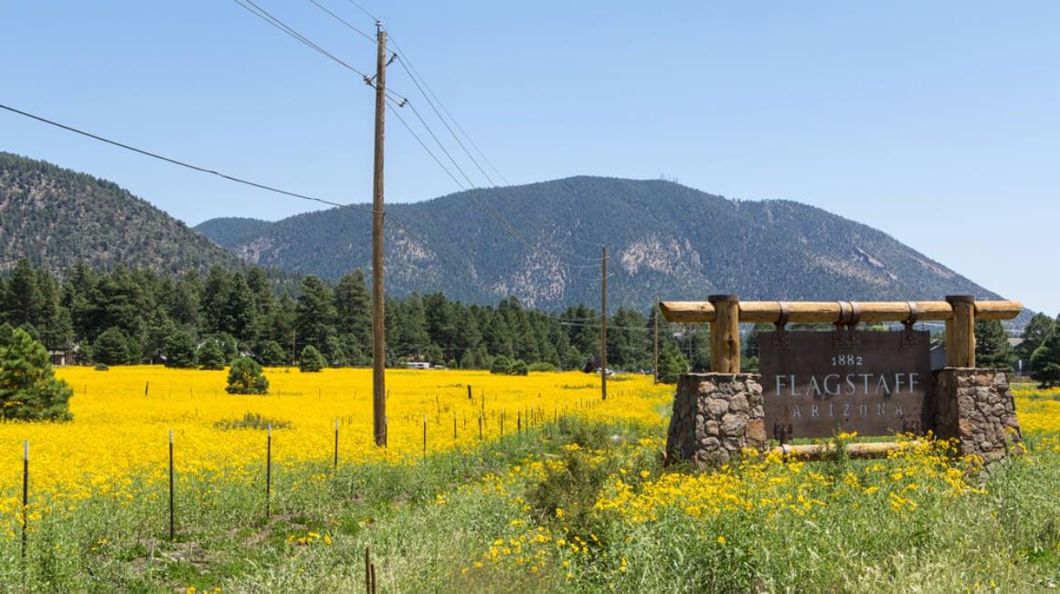 Destination in Flagstaff
