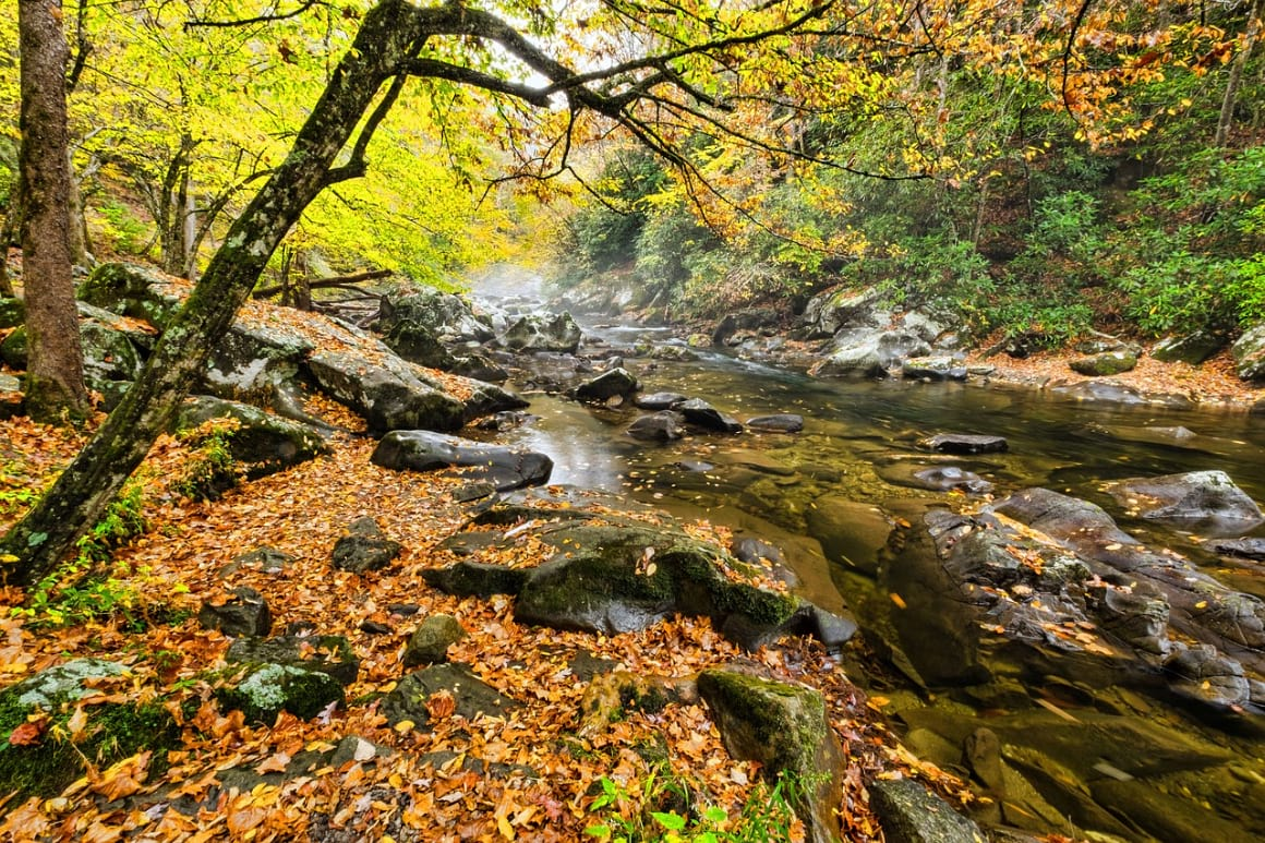 Smoky Mountains Riverbed
