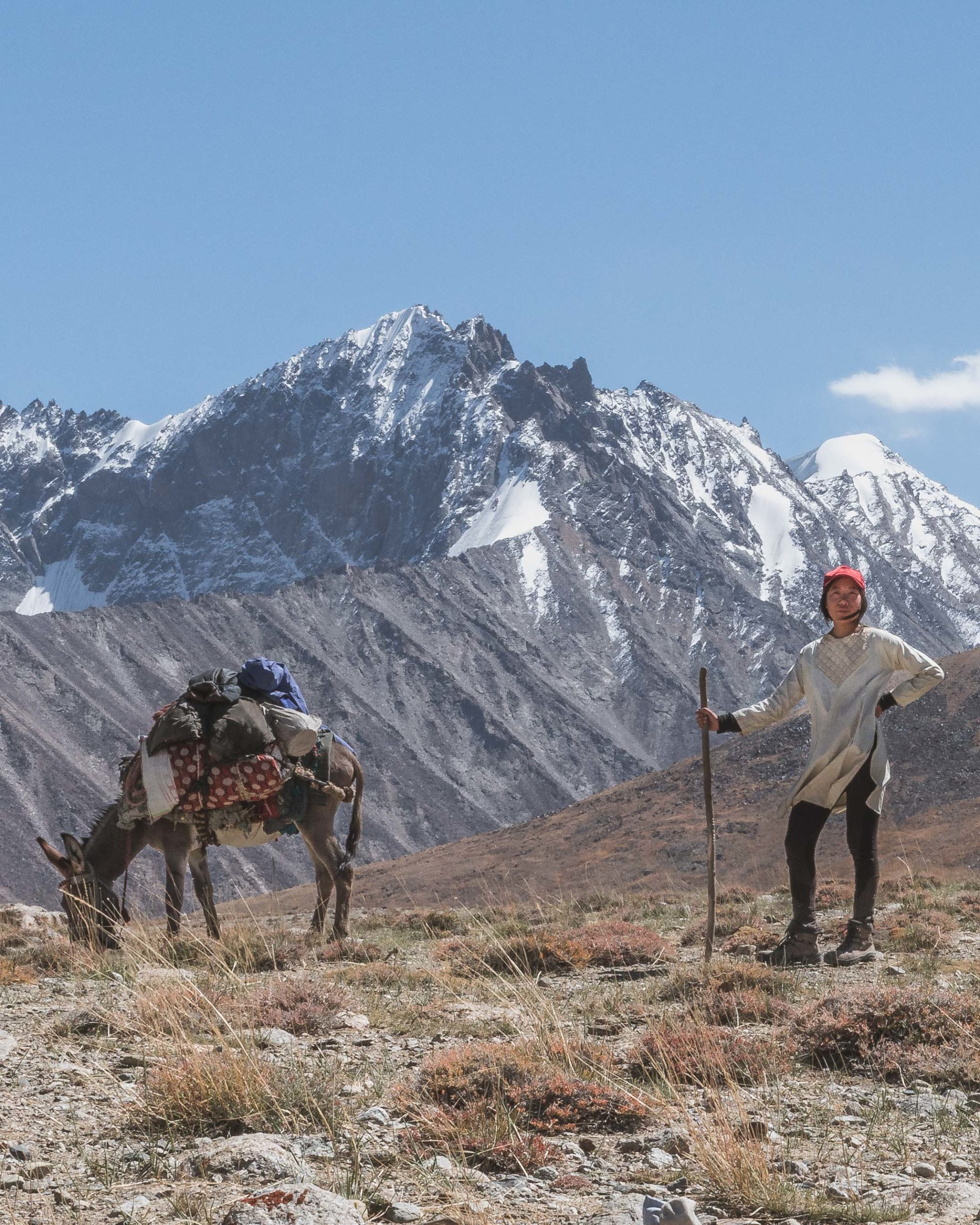 A donkey with stuff strapped to his back eats grass while Marsha and her red cap stand to the side. There are mountains of Afghanistan behind them.