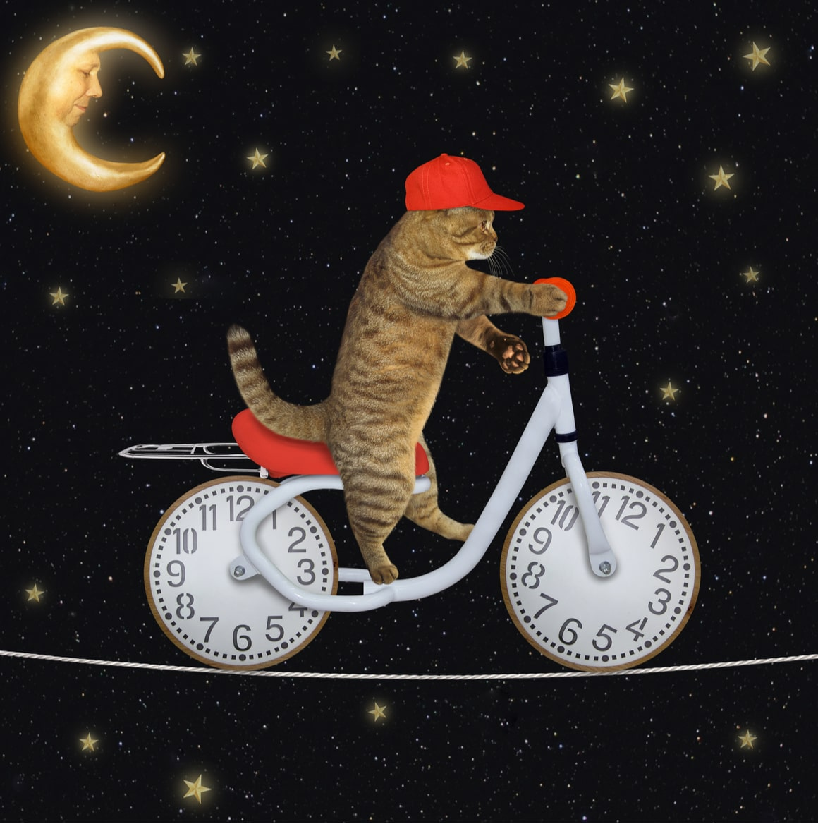 A cat rides a bicycle through the milky way cartoon.