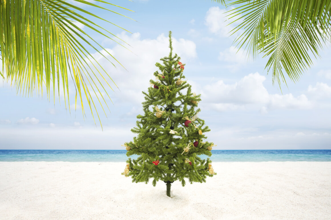 Christmas in the Tropics