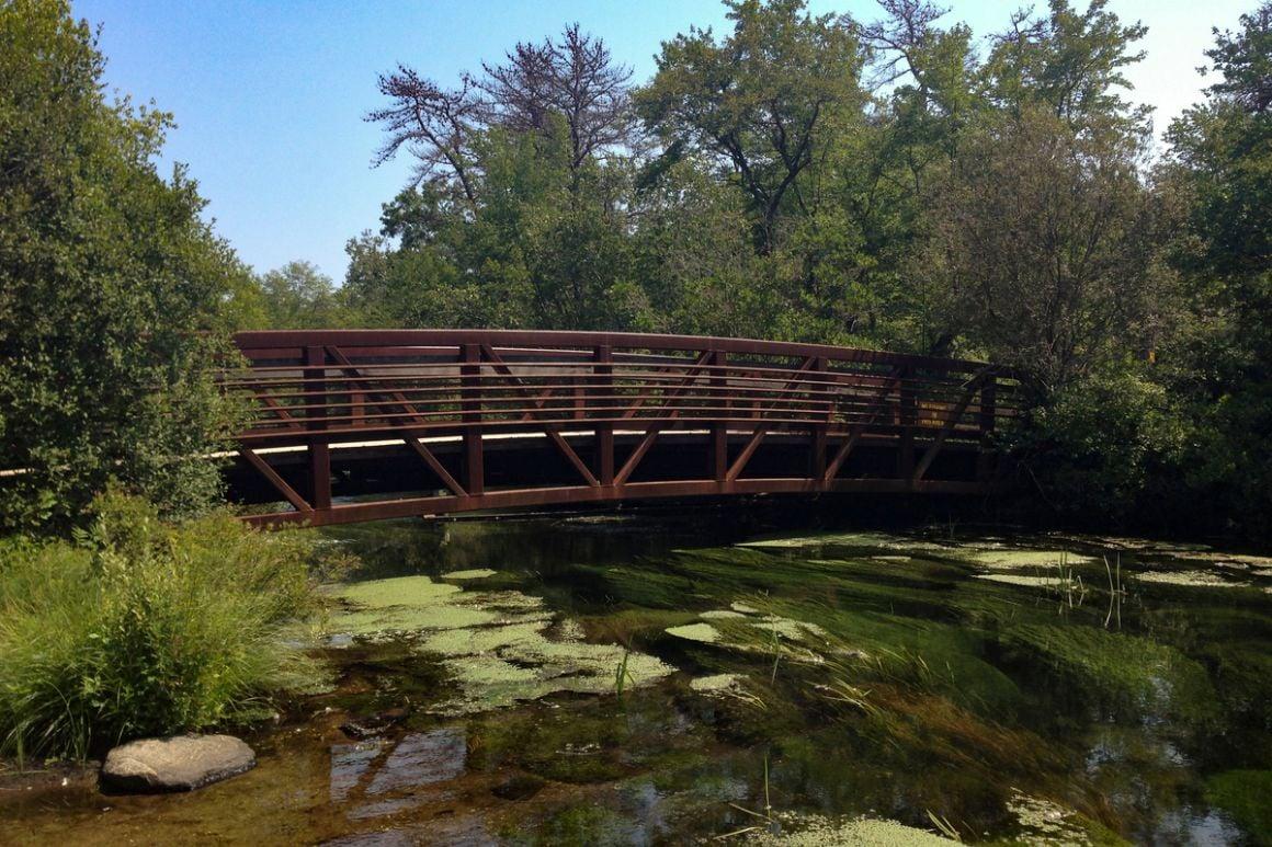 Connetquot River State Park Long Island