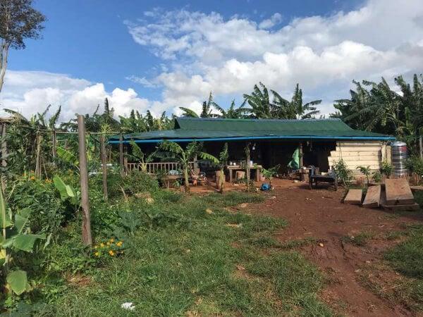 Help on an Organic Farm